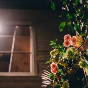 new-orleans-wedding-floral-arrangements-kim-starr-wise-031117-14